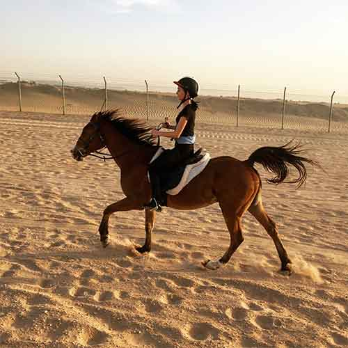 Best Desert Safari Dubai Deals