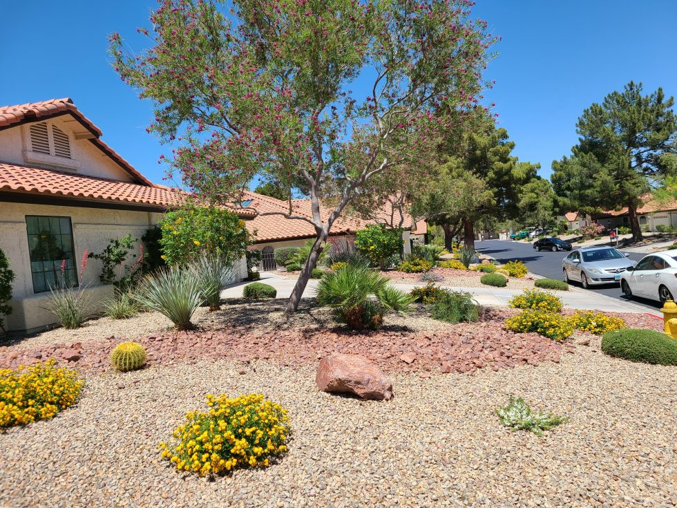 Use Henderson, NV Realtors To Find The Perfect Home
